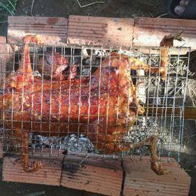 Thỏ nướng xa lửa giá sỉ