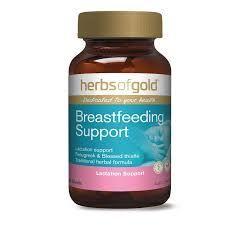 Herbs of Gold Breastfeeding Support - Giải pháp lợi sữa cho mẹ giá sỉ