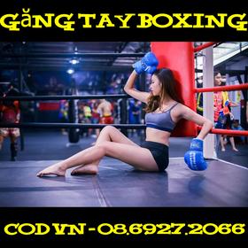 bán găng tay boxing giá rẻ giá sỉ