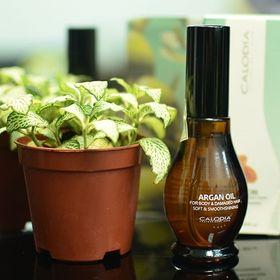 tinh dầu dưỡng tóc CALODIA argan oil 55ml giá sỉ