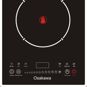 Bếp điện từ Osakawa HL201