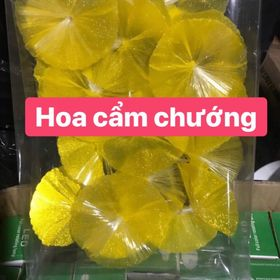 Dây đèn led hoa cẩm chướng giá sỉ