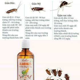 Tinh dầu chống côn trùng Lam Hà