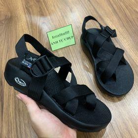 Giày Sandal Nam chaco D172 giá sỉ
