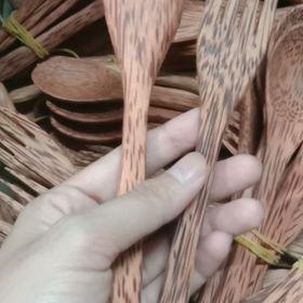 Muỗng + Nĩa gỗ dừa